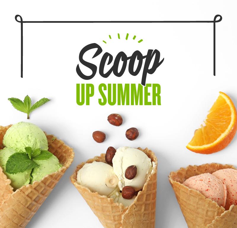 Scoop Up Summer